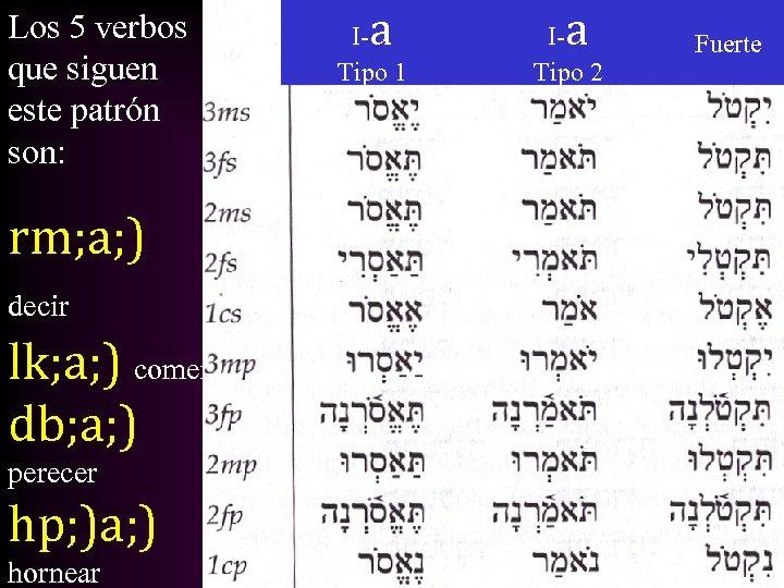 Los 5 verbos que siguen este patrón son: rm; a; ) decir lk; a;