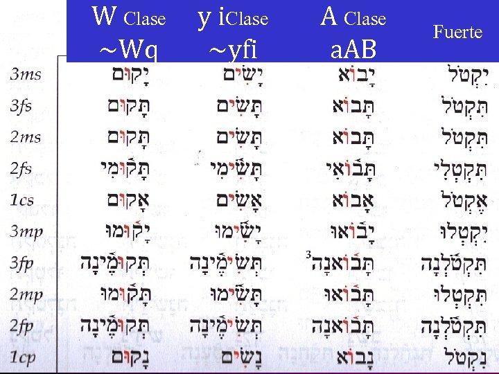 W Clase ~Wq y i. Clase ~yfi A Clase a. AB Fuerte