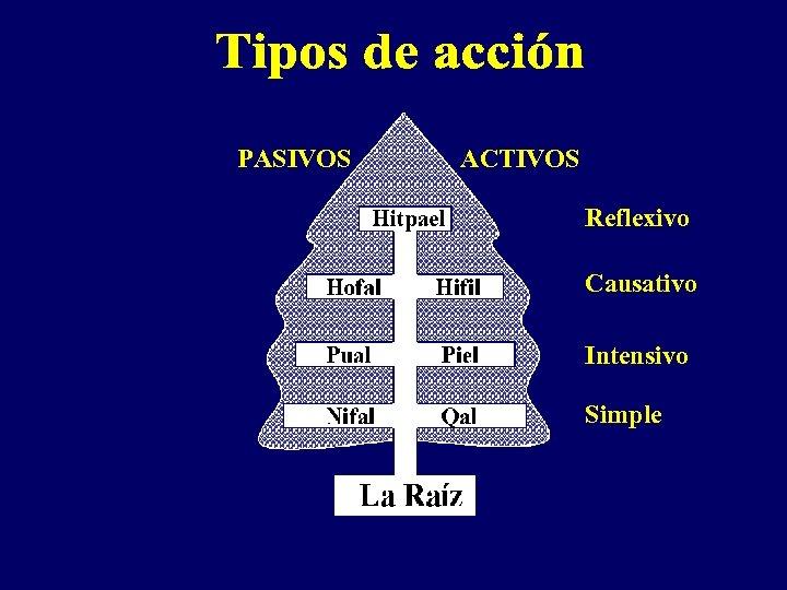PASIVOS ACTIVOS Reflexivo Causativo Intensivo Simple