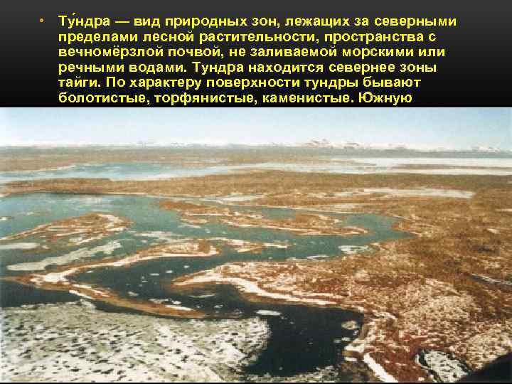 • Ту ндра — вид природных зон, лежащих за северными пределами лесной растительности,