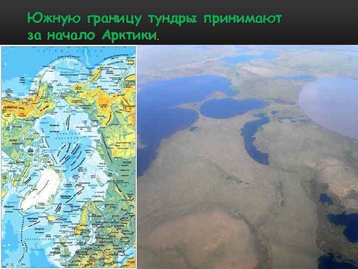 Южную границу тундры принимают за начало Арктики.