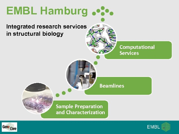 EMBL Hamburg Integrated research services in structural biology Computational Services Beamlines Sample Preparation and