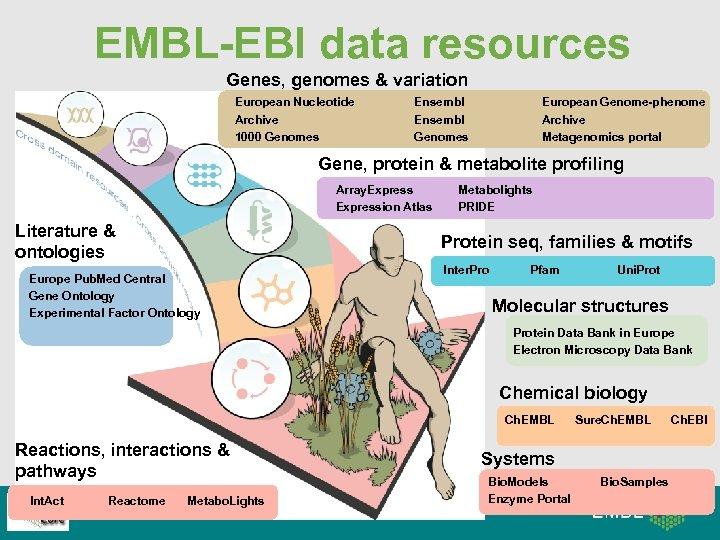 EMBL-EBI data resources Genes, genomes & variation European Nucleotide Archive 1000 Genomes Ensembl Genomes