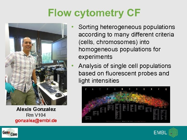 Flow cytometry CF • Sorting heterogeneous populations according to many different criteria (cells, chromosomes)