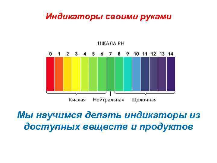 Индикаторы своими руками Мы научимся делать индикаторы из доступных веществ и продуктов