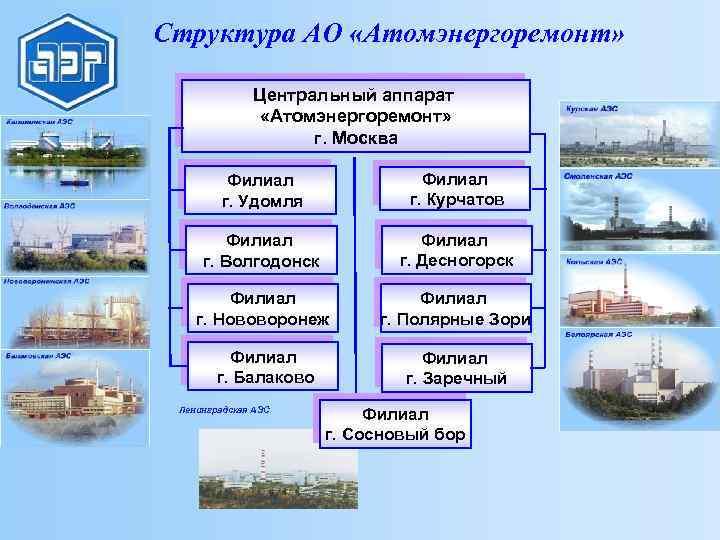Структура АО «Атомэнергоремонт» Центральный аппарат «Атомэнергоремонт» г. Москва Филиал г. Удомля Филиал г. Курчатов