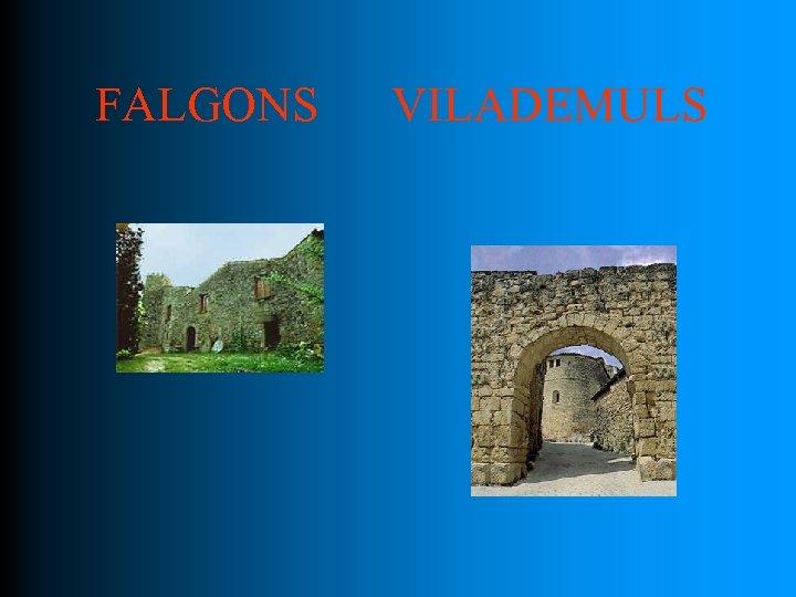 FALGONS VILADEMULS
