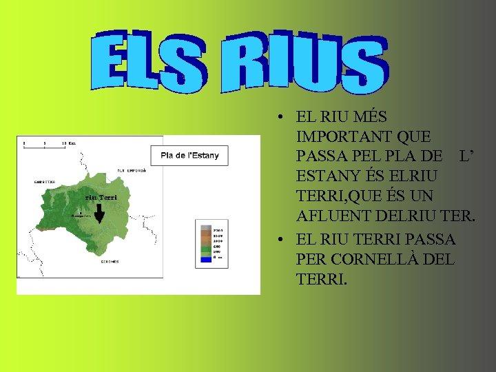 • EL RIU MÉS IMPORTANT QUE PASSA PEL PLA DE L' ESTANY ÉS
