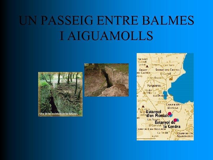 UN PASSEIG ENTRE BALMES I AIGUAMOLLS