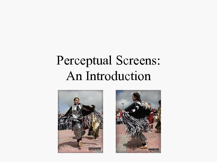 Perceptual Screens: An Introduction