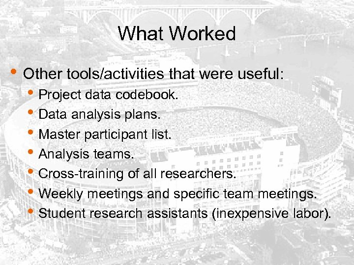 What Worked • Other tools/activities that were useful: • Project data codebook. • Data