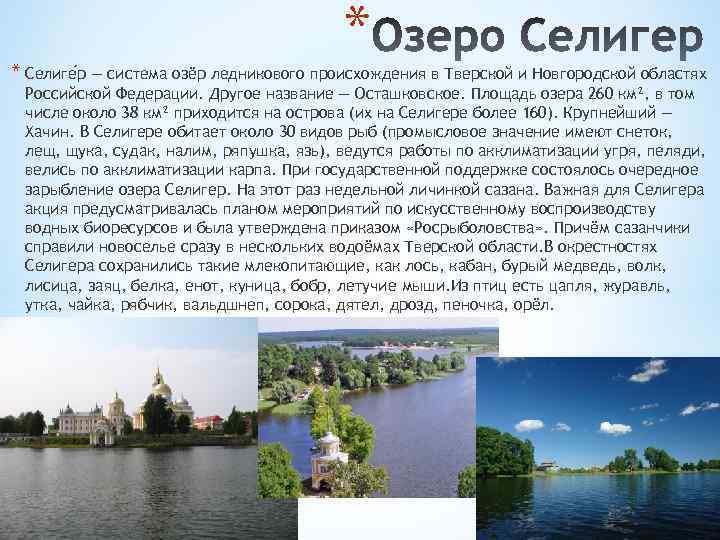 * * Селиге р — система озёр ледникового происхождения в Тверской и Новгородской областях