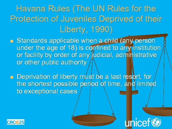 Havana Rules (The UN Rules for the Protection of Juveniles Deprived of their Liberty,