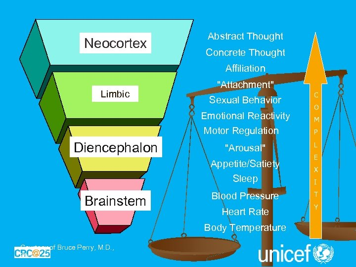 Neocortex Abstract Thought Concrete Thought Affiliation Limbic