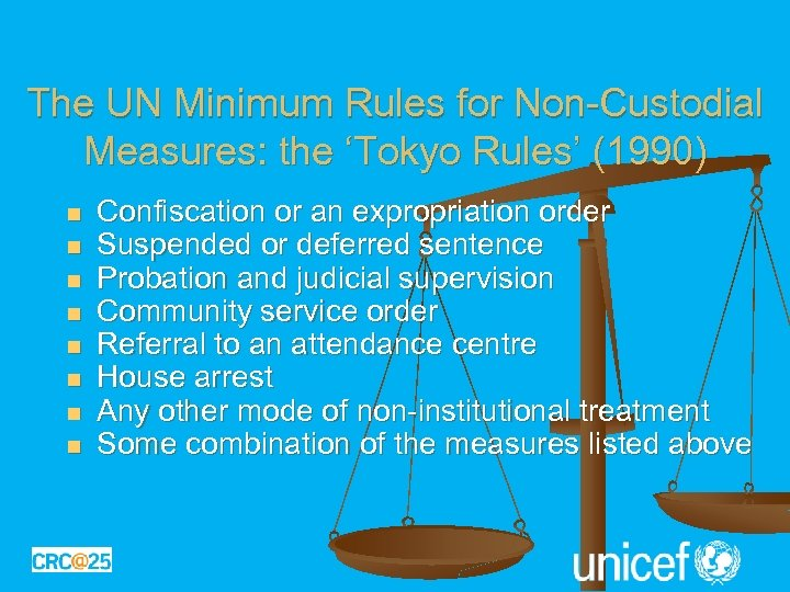 The UN Minimum Rules for Non-Custodial Measures: the 'Tokyo Rules' (1990) n n n