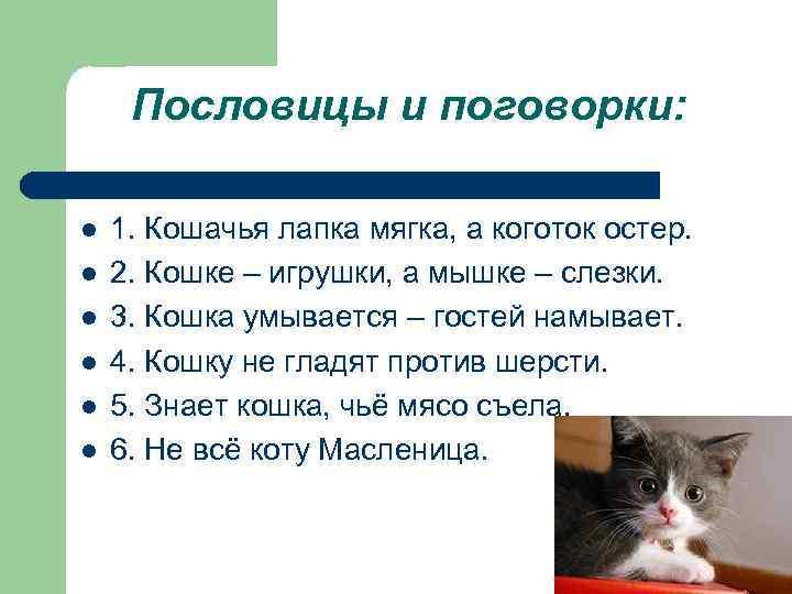 Пословицы и поговорки: l l l 1. Кошачья лапка мягка, а коготок остер. 2.