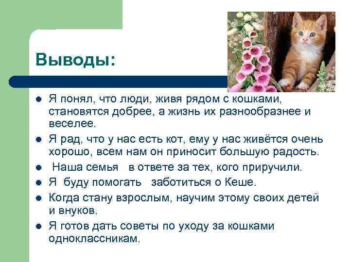 Выводы: l l l Я понял, что люди, живя рядом с кошками, становятся добрее,