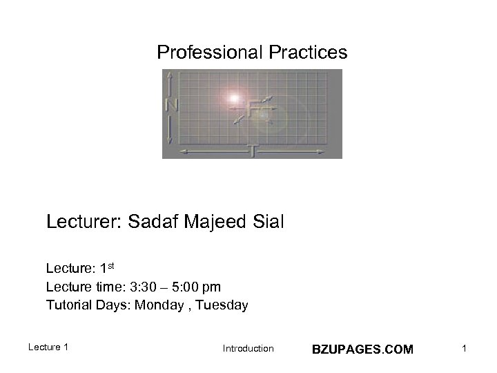 Professional Practices Lecturer: Sadaf Majeed Sial Lecture: 1 st Lecture time: 3: 30 –
