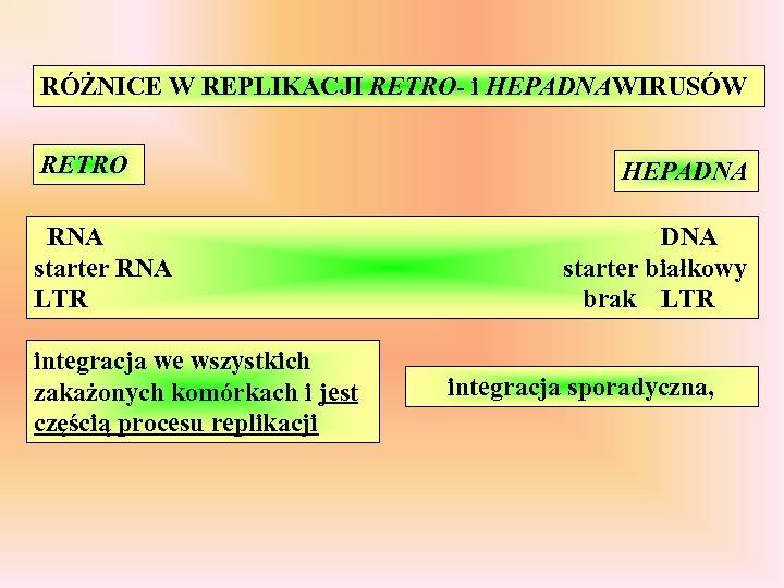 RÓŻNICE W REPLIKACJI RETRO- i HEPADNAWIRUSÓW RETRO RNA starter RNA LTR integracja we wszystkich