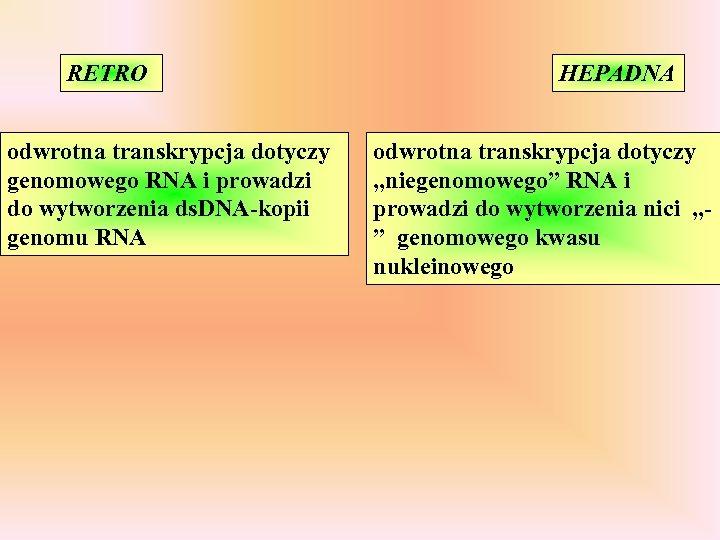 RETRO odwrotna transkrypcja dotyczy genomowego RNA i prowadzi do wytworzenia ds. DNA-kopii genomu RNA