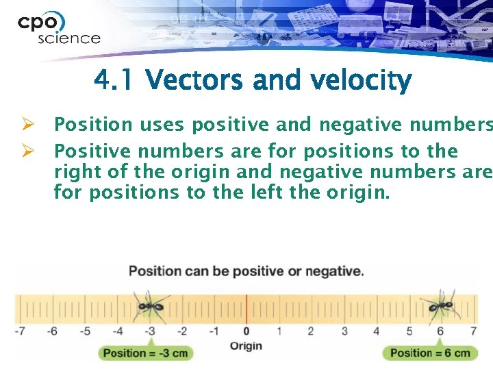 4. 1 Vectors and velocity Ø Position uses positive and negative numbers Ø Positive
