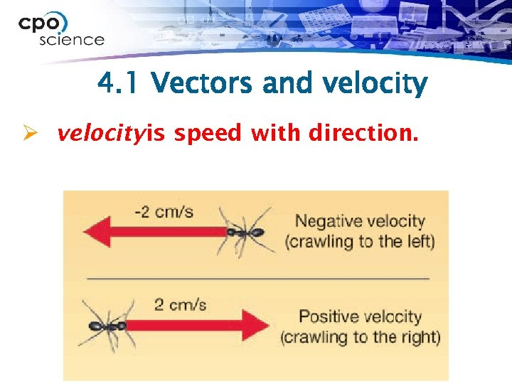 4. 1 Vectors and velocity Ø velocity is speed with direction.