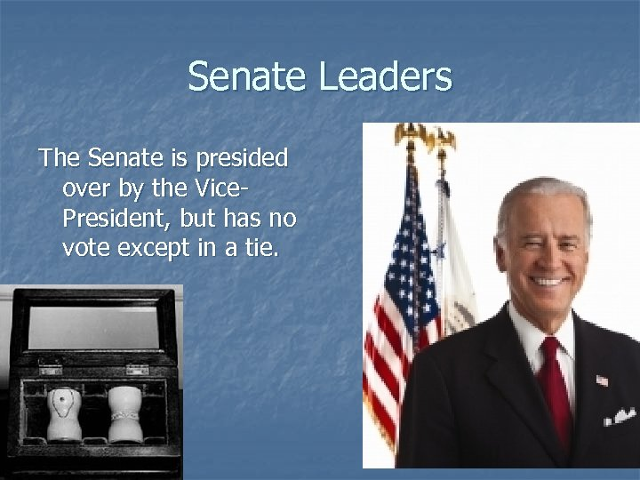 Senate Leaders The Senate is presided over by the Vice. President, but has no