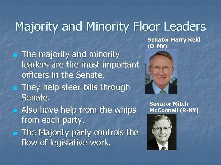 Majority and Minority Floor Leaders n n The majority and minority leaders are the