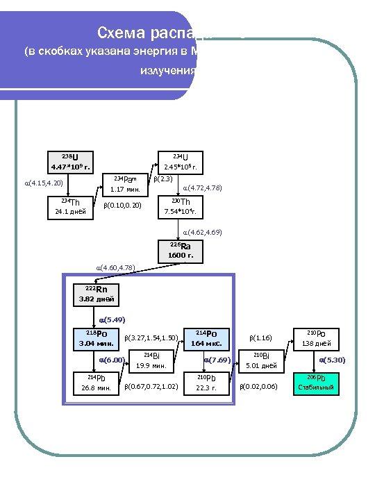 Схема распада 238 U (в скобках указана энергия в Мэ. В соответствующего излучения). 238