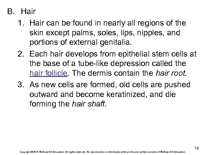 B. Hair 1. Hair can be found in nearly all regions of the skin