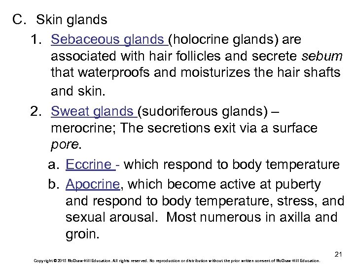 C. Skin glands 1. Sebaceous glands (holocrine glands) are associated with hair follicles and