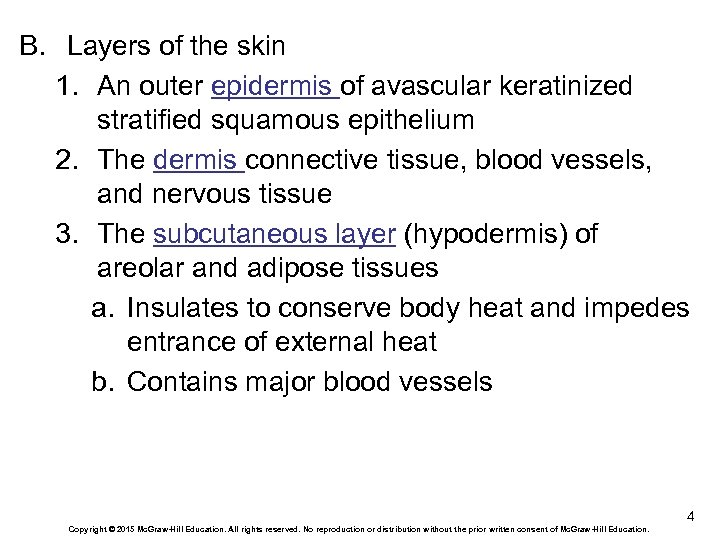 B. Layers of the skin 1. An outer epidermis of avascular keratinized stratified squamous
