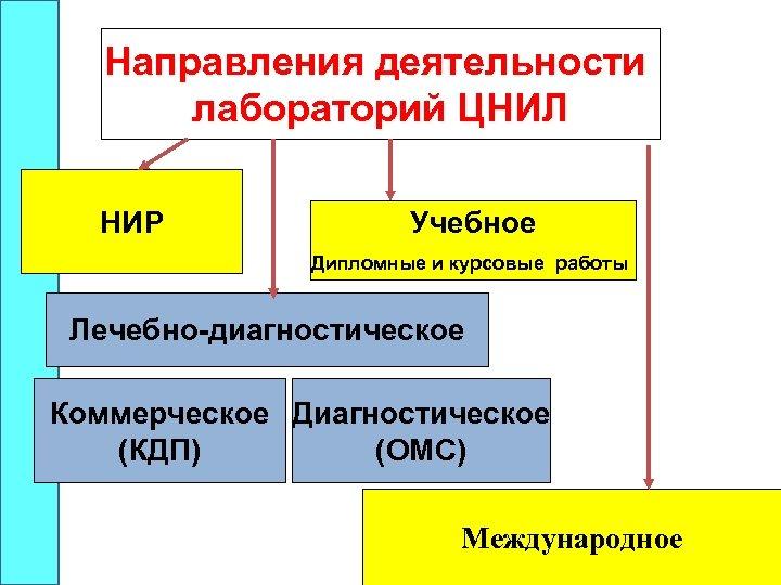 Направления деятельности лабораторий ЦНИЛ НИР Учебное Дипломные и курсовые работы Лечебно-диагностическое Коммерческое Диагностическое (КДП)