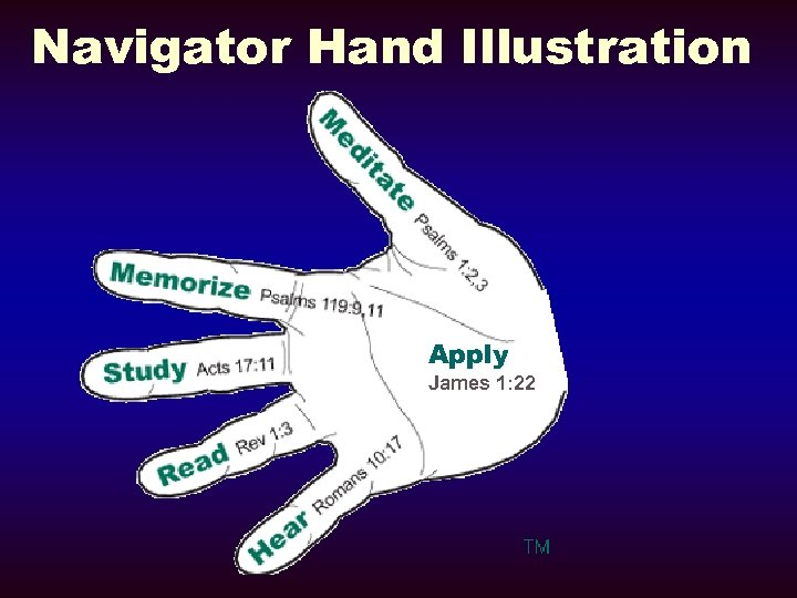 Navigator Hand Illustration Apply James 1: 22