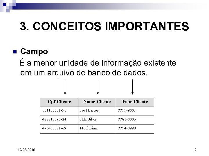 3. CONCEITOS IMPORTANTES n Campo É a menor unidade de informação existente em um