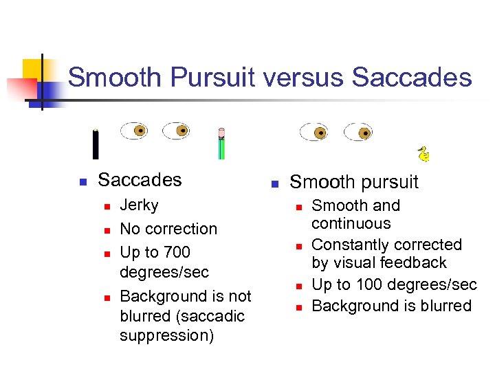 Smooth Pursuit versus Saccades n n n n Jerky No correction Up to 700