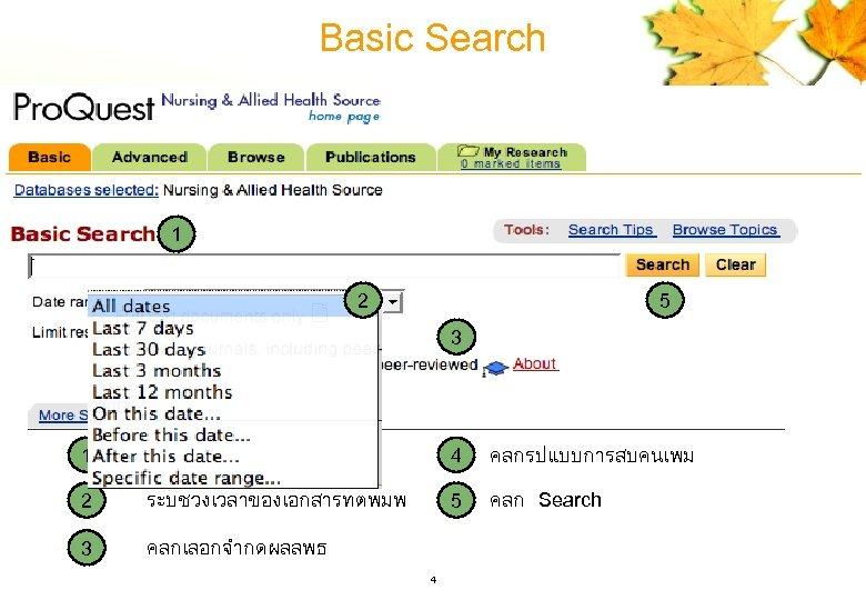 Basic Search 1 2 5 3 4 1 ใสคำคน 4 คลกรปแบบการสบคนเพม 2 ระบชวงเวลาของเอกสารทตพมพ 5