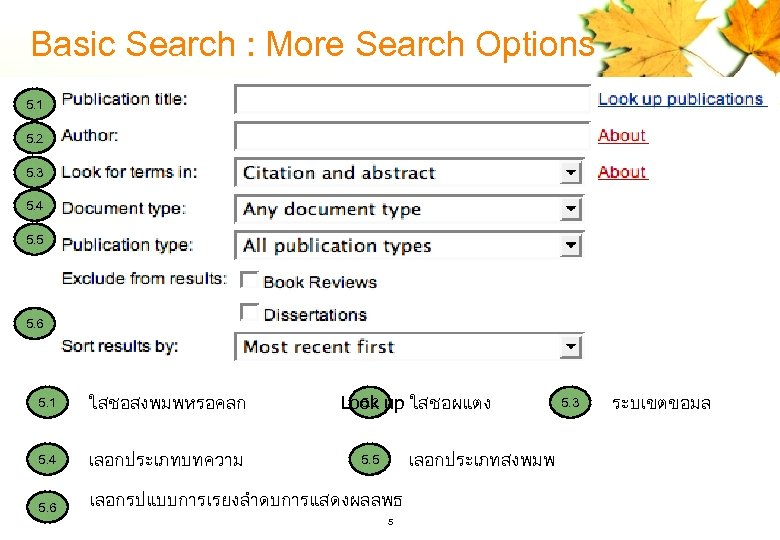Basic Search : More Search Options 5. 1 5. 2 5. 3 5. 4