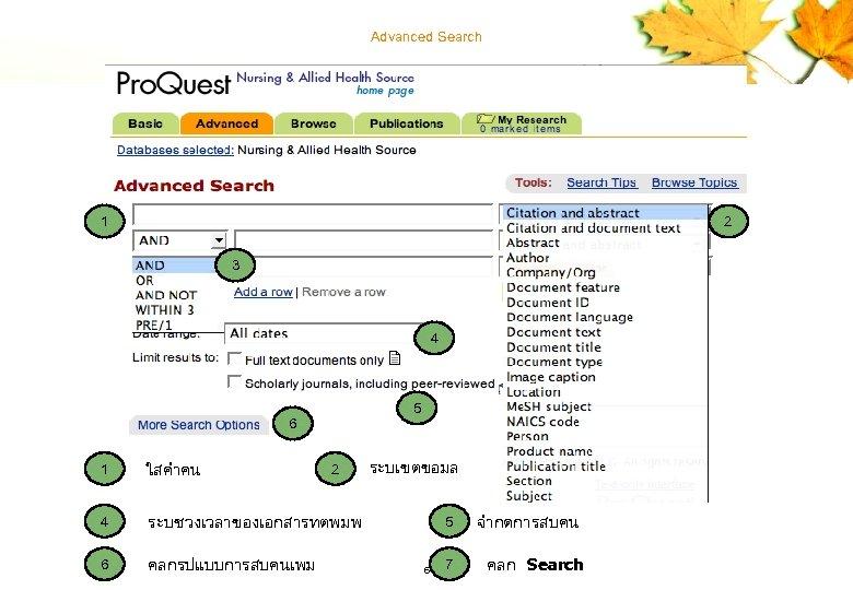 Advanced Search 1 2 3 7 4 5 6 1 ใสคำคน 4 6 คลกรปแบบการสบคนเพม