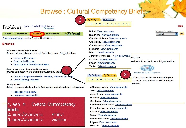 Browse : Cultural Competency Briefs 2 1 3 1. คลก ท Cultaral Commpetency Briefs