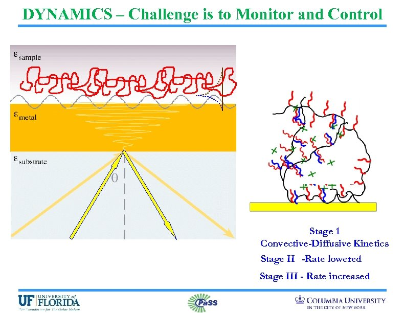 DYNAMICS – Challenge is to Monitor and Control Stage 1 Convective-Diffusive Kinetics Stage II