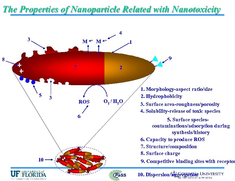 The Properties of Nanoparticle Related with Nanotoxicity 4 3 M n+ 1 9 8