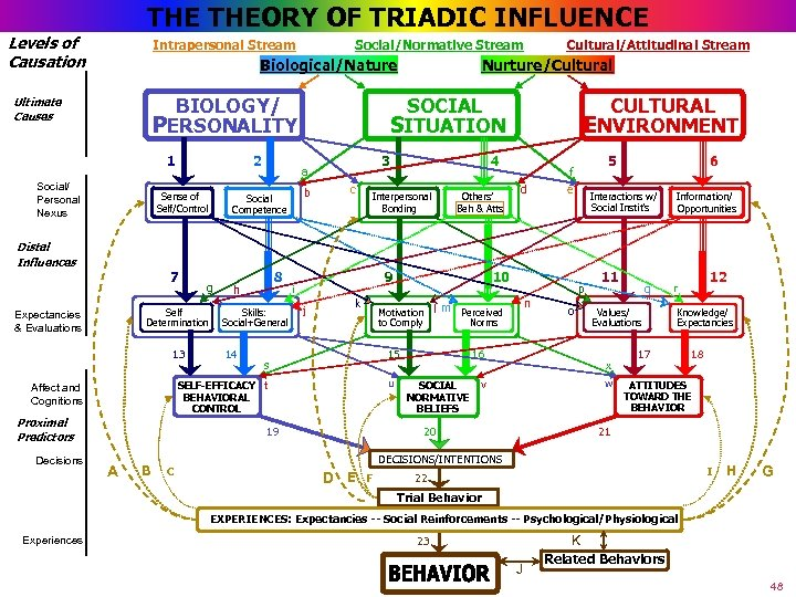 THE THEORY OF TRIADIC INFLUENCE Levels of Causation Intrapersonal Stream Biological/Nature BIOLOGY/ PERSONALITY Ultimate
