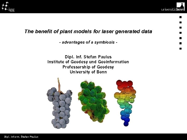 Titelmaster The benefit of plant models for laser generated data - advantages of a