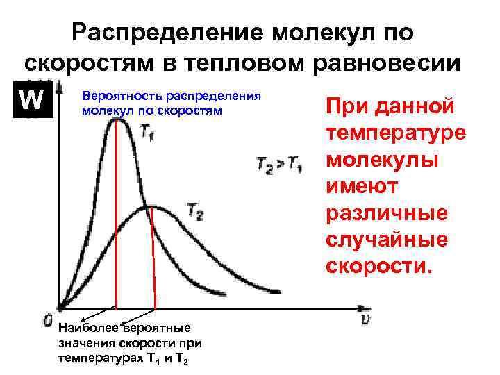 Распределение молекул по скоростям в тепловом равновесии W Вероятность распределения молекул по скоростям Наиболее