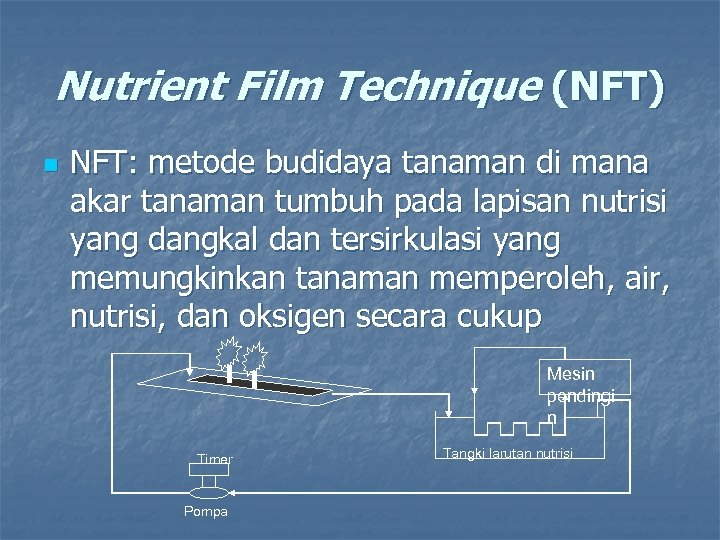 Nutrient Film Technique (NFT) n NFT: metode budidaya tanaman di mana akar tanaman tumbuh