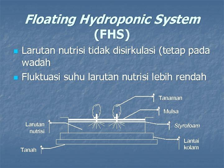 Floating Hydroponic System (FHS) n n Larutan nutrisi tidak disirkulasi (tetap pada wadah Fluktuasi