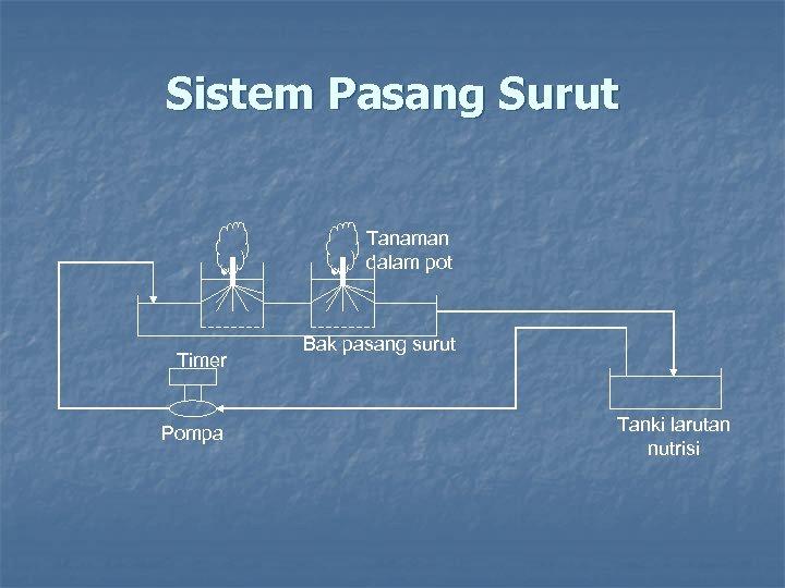 Sistem Pasang Surut Tanaman dalam pot Timer Pompa Bak pasang surut Tanki larutan nutrisi