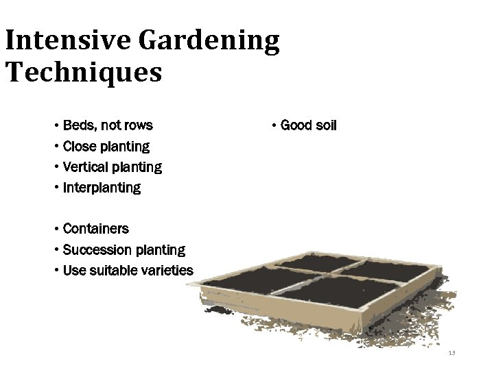 Intensive Gardening Techniques • Beds, not rows • Close planting • Vertical planting •