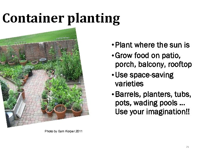 Container planting • Plant where the sun is • Grow food on patio, porch,